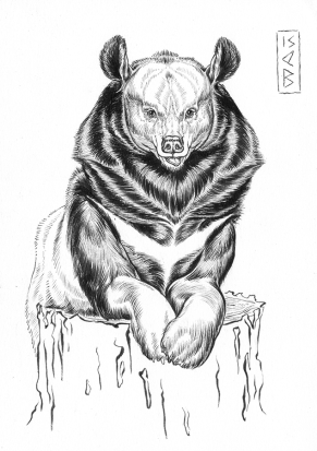 Asian Bear Inktober 2015